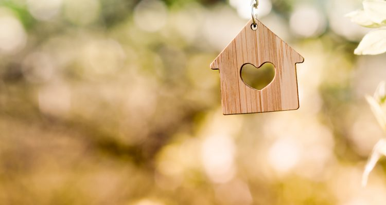 Small wooden house hangs from a tree branch.