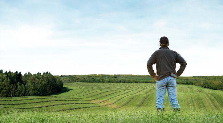 Rearview shot of a farmer standing on a field