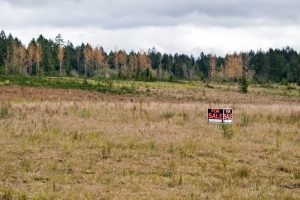 """An open field surrounded by trees with a """"For Sale"""" sign in the middle of the field."""